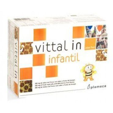 VITAL IN INFANTIL JALEA REAL 20AMP INFANTIL