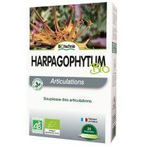 HARPAGOFITO 20 AMPOLLAS BIOTECHNIE