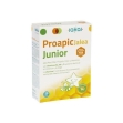Proapic jalea real junior 20 viales