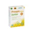 Proapic jalea real junior 20 viales