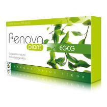 RENOVA PLANT EGCG 40 CAPS 575MG TEGOR