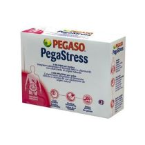 PEGASTRESS FLORA Y B5